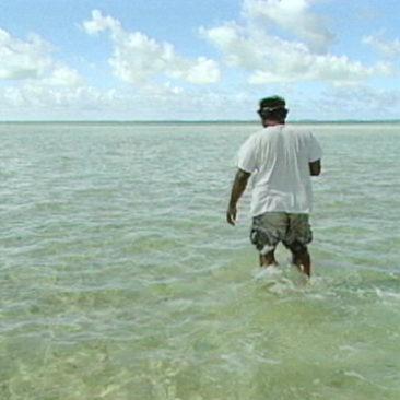 Rising Waters: 2013 Update
